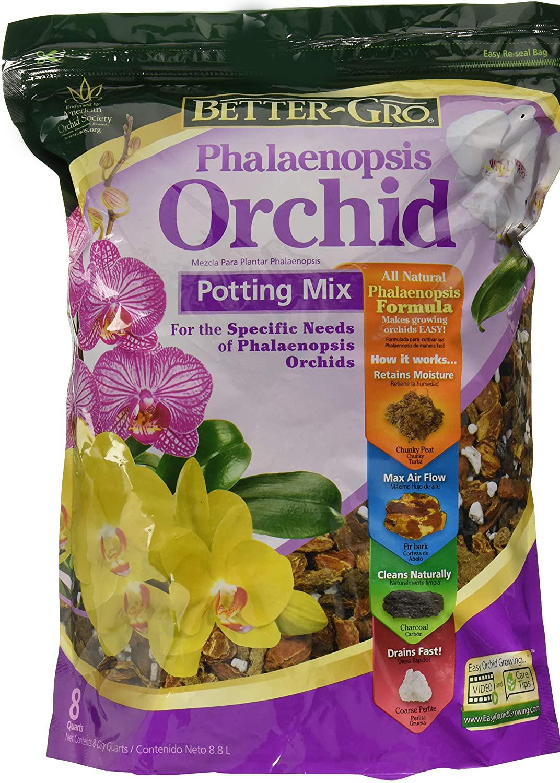 Phalaenopsis Orchid Mix